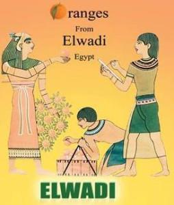 Elwadi